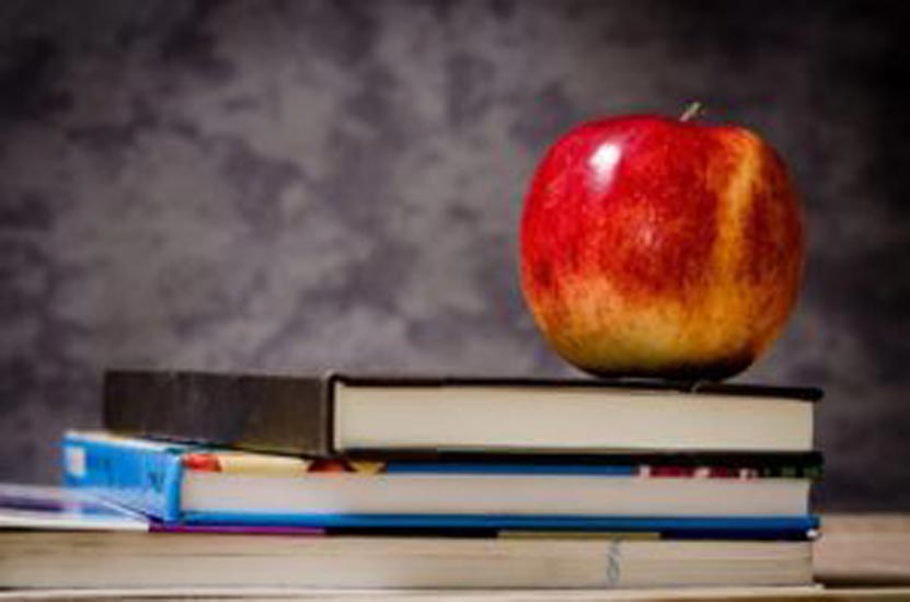 Some Pros and Cons of Homeschooling