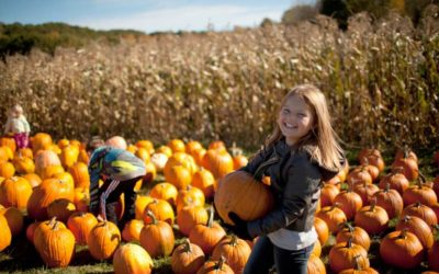 What does Fall mean for your kids?